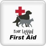 Four Legged First Aid